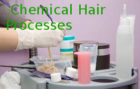 Special Course on Chemical Hair Processes
