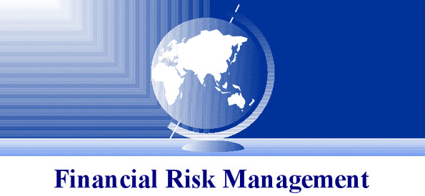 diploma financial risk management dfrm