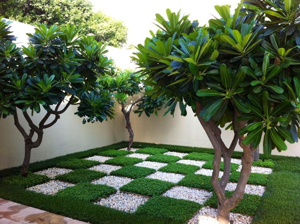 Certificate Courses in Garden Design and Development