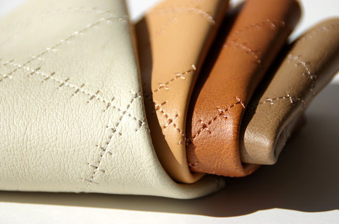 Diploma Leather Technology (DLT)