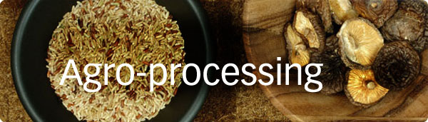 Diploma In Agro Processing