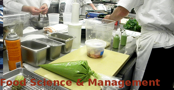 Bachelor of Science (BSc Food Science & Management)