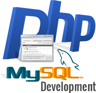 Certificate Course on PHP & My-SQL for Web Based Development