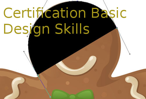 Certification Basic Design Skills (CBDS)