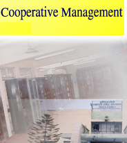 Diploma Co-operative Management (DCM)