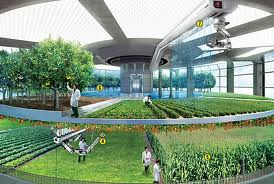 Diploma in Agriculture Technology