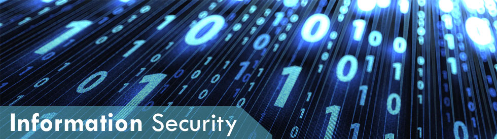 Diploma in Information System and Cyber Security (DISCS)