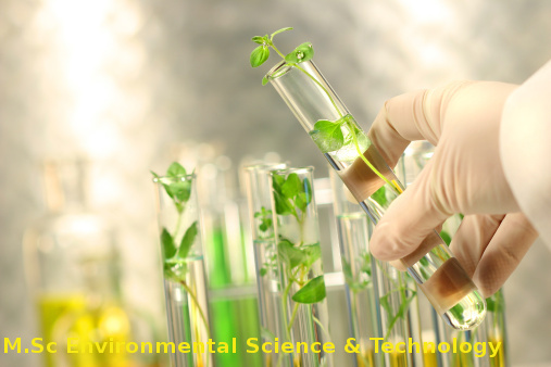 Master of Science (MSc Environmental Science & Technology)