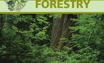 Diploma Course in Forestry