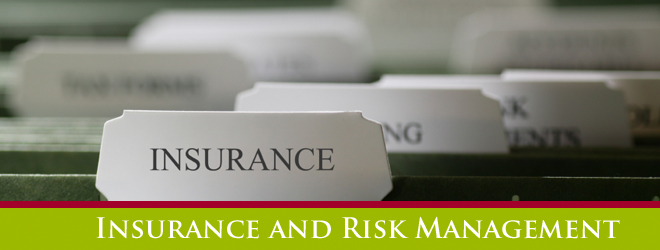 Bachelor Of Insurance and Risk Management