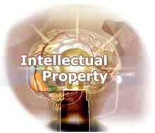 Diploma Intellectual Property Law (DIPL)