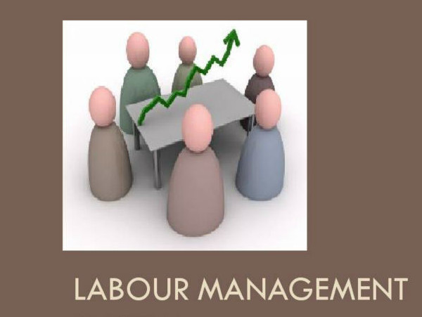 Master of Labour Management (MLM)