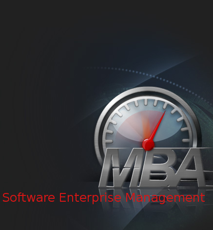 Master of Business Administration in Software Enterprise Management (SEM)