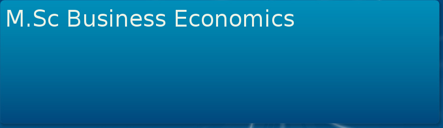 Master of Science (MSc Business Economics)