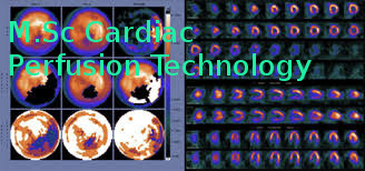 Master of Science (MSc Cardiac Perfusion Technology)