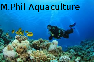 Master of Philosophy (MPhil Aquaculture)