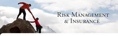Post Graduate Diploma in Management in Insurance & Risk Management (PGDM in Insurance & Risk Management)