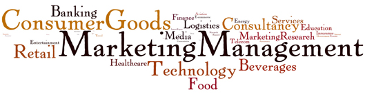 Master in Marketing Management (MMM)