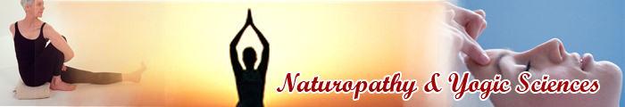 Bachelor of Naturopathy and Yogic Science (BNYS)