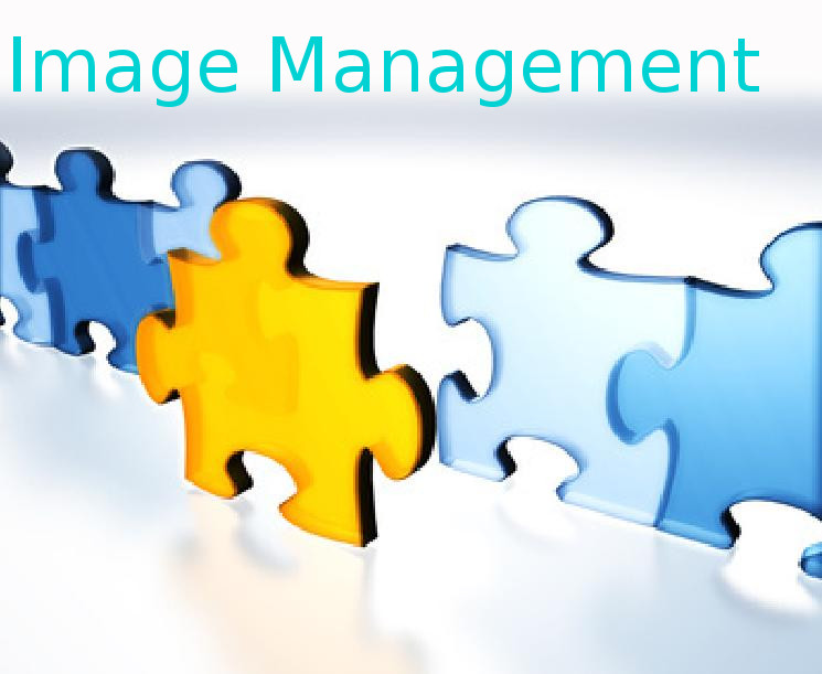 Programme in Image Management