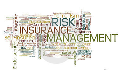 Certificate Course In Insurance Risk Management