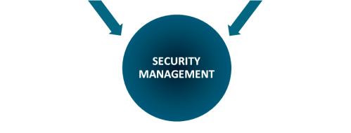 Diploma Security Management (DSM)