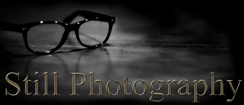 Professional Certificate Course in Still Photography