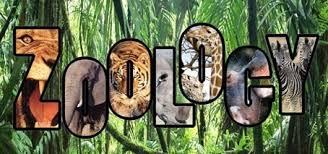 XL-T: Zoology GATE Exam Syllabus
