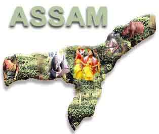 Assam state is set to get 12 new government colleges