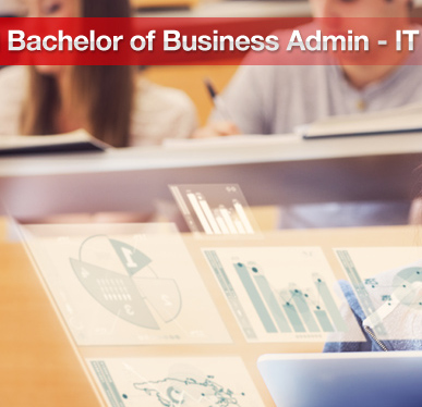 Bachelor of Business Administration (BBA IT)