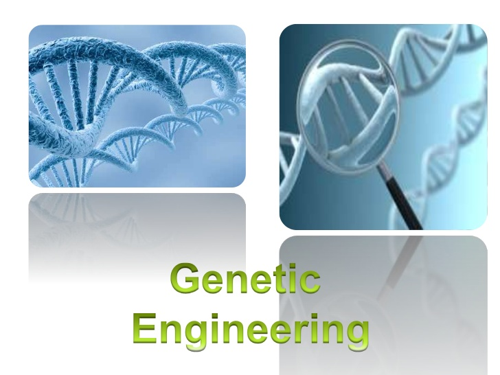 Master of Technology (MTech Genetic Engineering)