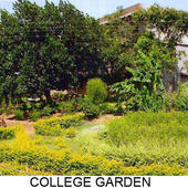 Bhagwan Shri Shrikrishna College of Education - College Garden View - Bhagwan Shri Shrikrishna College of Education - College Garden View