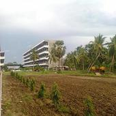 College Building - Side View