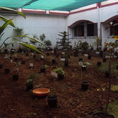 Konkan Gyanpeeth Rahul Dharkar College of Pharmacy & Research Institute - Garden At College View - Konkan Gyanpeeth Rahul Dharkar College of Pharmacy & Research Institute - Garden At College View