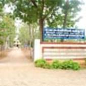 College Entrance