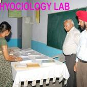 College Psychology Lab - College Psychology Lab