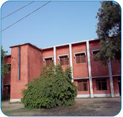 College Building - M D P G Girls College, Raisinghnagar
