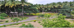 College Garden - Padmashri Vikhe Patil Arts, Science and Commerce College, Pravaranagar