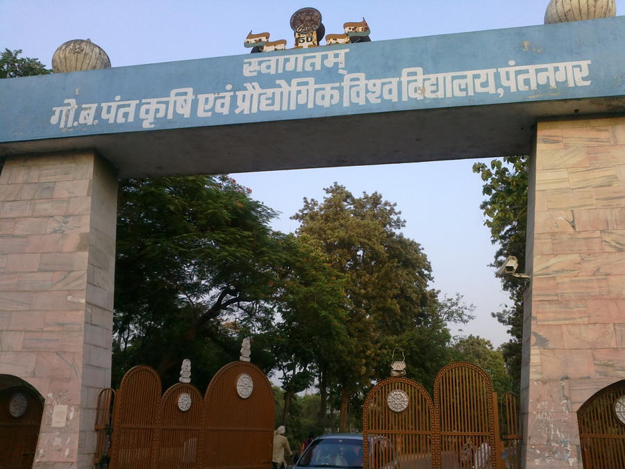 Govind Ballabh Pant University of Agriculture & Technology (GBPUAT), Pantnagar