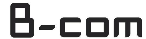 Bachelor of Commerce (BCom)
