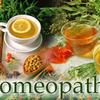 Diploma in Electro Homeopathy Medicine (DEHM)