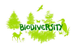 Post Graduate Diploma in Biodiversity