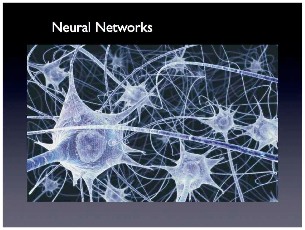 Doctor of Philosophy (PhD Neural Networks)