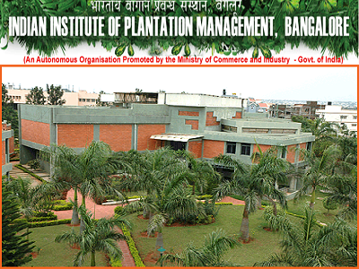 PGCM International Business Admission 2015, IIPM, Bangalore