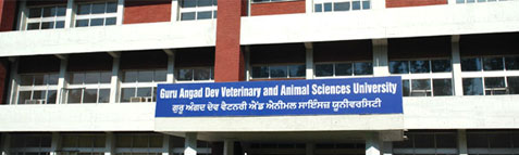 Postgraduate Programmes 2015 @ Guru Angad Dev Veterinary and Animal Sciences University (GADVASU), Ludhiana