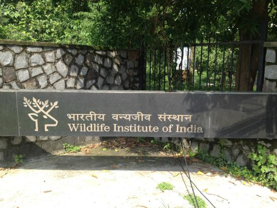 MSc in Wildlife Science Admission 2015-17 @ Wildlife Institute of India, Dehradun