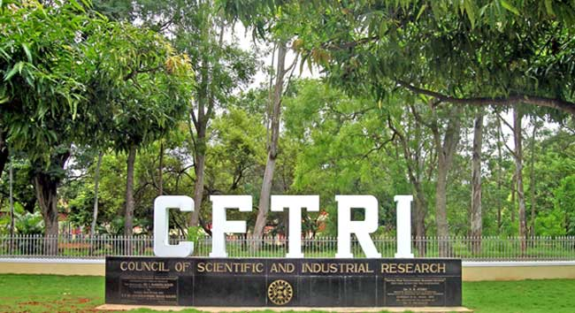 Central Food Technological Research Institute (CFTRI) invites applications for MSc in Food Technology Admission 2015