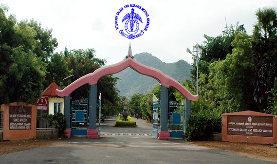 Tamil Nadu Veterinary and Animal Sciences University (TANUVAS) announces MVSc Degree Programmes 2015